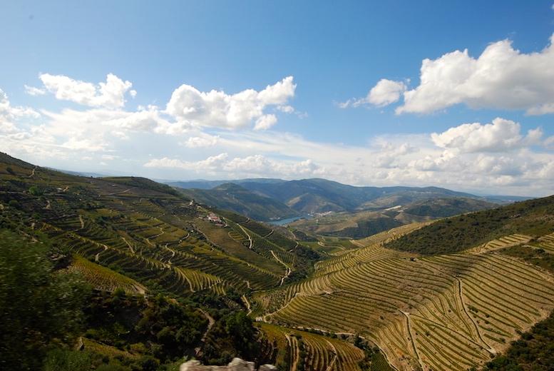 Douro hills