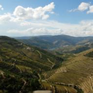 Portuguese wine region - Douro