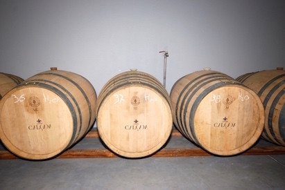 Barrels of Quinta da Calcada wine