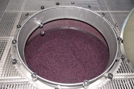 Red wine being produced at the Quinta Vale d'Aldeia