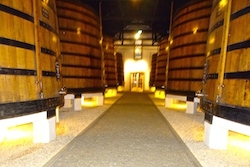 Discover Port wine